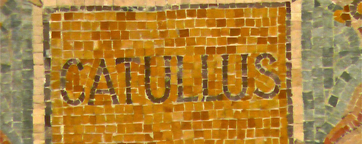 catullus one Catullus tells us in one of his most famous poems that the success of his poetry  can be measured by whether it sexually excites hairy old men (c16, 7–11.